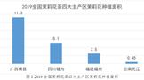 2020中国茉莉花茶产销形势分析报告