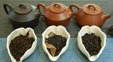 你的茶叶为什么卖不出去?