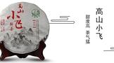 2016年下关高山小飞生茶357克开汤品评