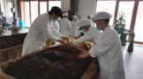 贵州省怡丰原生态茶业晁忠琼:精心做强茶产业 助农增收奔小康