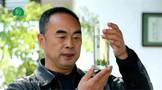 陕西:茶叶联营公司刘保柱荣获第三届商南县道德模范称号