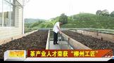 """茶产业人才余树朋荣获""""柳州工匠"""""""