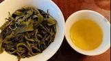 研究表明六堡茶生茶高含EGCG