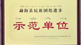 """中吉号被评为2020年""""勐海县民族团结进步示范单位"""""""