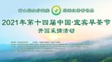第十四届中国·宜宾早茶节开园采摘活动火热开幕