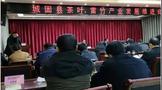 城固县召开全县茶产业发展推进会