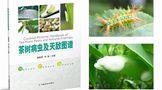 15种病害 89种虫害 34种天敌——《茶树病虫及天敌图谱》