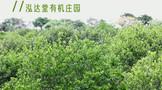 Wei xin tu pian 20210410132039