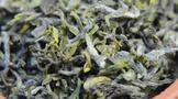 关于日照绿茶春茶价格的合理价格