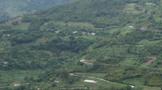 保山昌宁更戛乡:茶叶产业出现较好发展势头