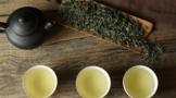 为什么有些人喝不了绿茶