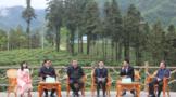 第二届陕西网上茶博会暨第二届镇巴茶产业发展大会开幕