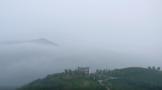中国首个白毫银针纪录片-完整版