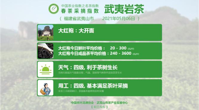水仙、肉桂、大红袍采摘结束,2021春茶采摘指数
