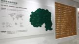 这个博物馆汇聚了超过30000种古树茶原料