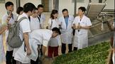 中国茶产业扶贫发展报告