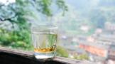国际茶日 | 全球20亿饮茶人的节日!和而不同,竞相绽放