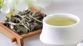 全国白茶产量已超7万吨 农业产值达75亿元