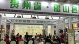 雷山县茶产业推荐会 在第三届哈尔滨春季茶产业博览会举行