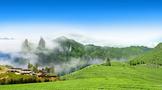 美丽中国茶乡行——食在政和