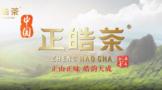 首发丨正皓茶2021企业形象宣传片全新发布!
