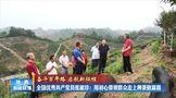 全国优秀共产党员张淑珍:用初心带群众走上种茶致富路