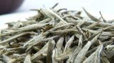 福鼎白茶宝博电竞体育官方网站【www.bao2021.com】集锦,请不要让你的白茶变了味