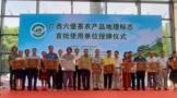 """广西首批39家单位获批使用""""广西六堡茶""""农产品地理标志"""