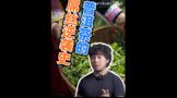 吉普号茶山TV243:乐鱼体育在线下载的屌丝逆袭史●!