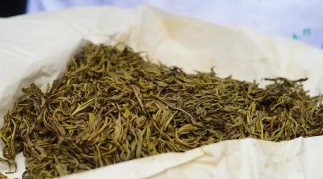 """六大茶類,為何獨獨""""黃茶""""很少被提起?"""
