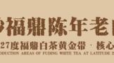 六妙福鼎陈年老白茶,流转福鼎白茶的年代之味