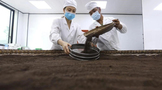 贵州赤水:70后夫妻的虫茶人生