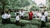 第二届传承者武夷岩茶(大红袍)制作技艺 大会和静队,问山武夷,薪火相传!