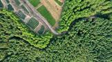 福建安溪:养生态绿色之根 成传世音韵之美