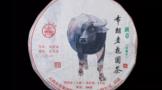 八角亭2021年布朗老树圆茶(班章珍藏限量版)