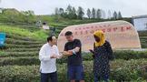 这些外国朋友慕名来到汉家刘氏茶园,他们干了哪些事?