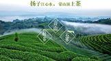 就是这么牛!蒙顶山区两家茶企旗下品牌再登2021中国茶企品牌价值百强榜!