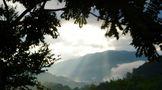 普洱六山漫游记:当我走进风味的秘境!