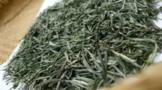 舌尖上的中国茶叶:古丈毛尖茶