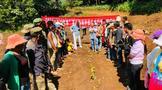 西盟縣茶特中心開展幼年茶樹地膜覆蓋技術培訓