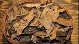 從制茶工藝看六堡茶的品種