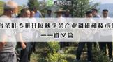省茶葉專班開展秋季茶產業調研和技術培訓——遵義篇