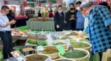 第七届中国(大连)国际茶产业博览会启幕