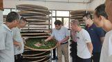 技術下鄉助推始興茶產業發展 助力鄉村振興