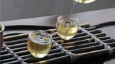 喝茶只認準一種?生茶和熟茶哪個才是終極?