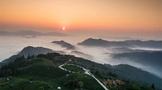 一周速读:广州国际茶产业大会、第十七届中国茶业经济年会、2021茶饮十大品牌