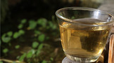 什么茶好喝又对身体好