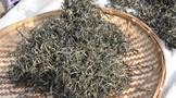 普洱茶越来越火!为什么茶叶却越来越难卖?