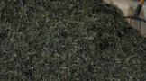 40万吨茶叶躺在云南仓库!数千家中小茶企,无法摆脱库存之痛?