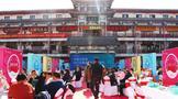 中国白茶城2021全国巡回产销对接会启幕